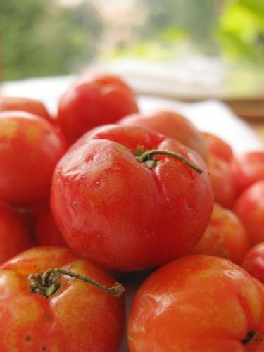 Vietnamese Cherry